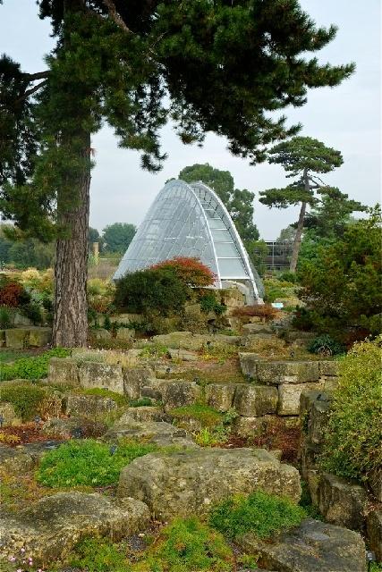 04 October 2014 Kent Alpine Gardeners Diary Gardeners Diaries